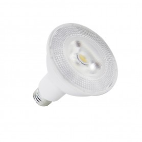Lampadina LED PAR30 13W